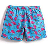 MaaMgic Mens Quick Dry Flamingo Swim Trunks With