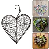 Heart Shape Metal Hanging Plants Basket Succulent Herb Flower Pot Planter Plant Basket