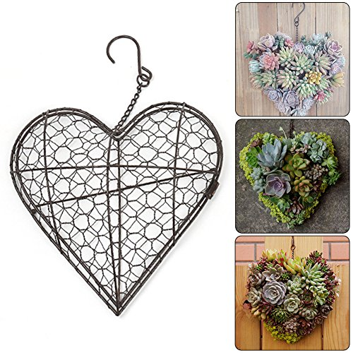 Hanging Planters, Heart Shape Flower Pots Iron Wall Succulent Planters Rustic Plant Holder Basket with Hook for Home Garden Decor -