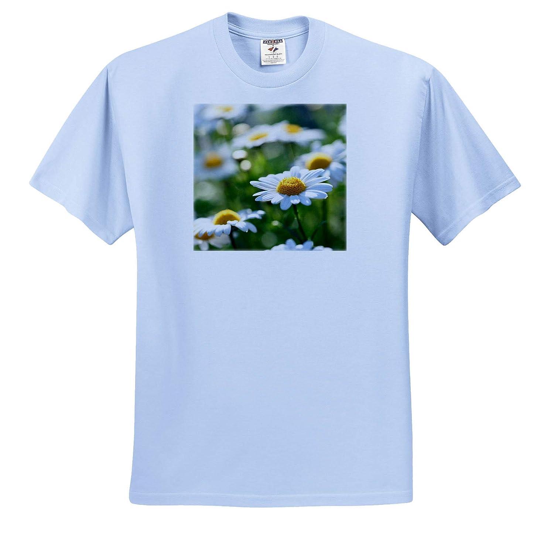 T-Shirts Daisies Floral Still Life Photography 3dRose Uta Naumann Photography Stilllife