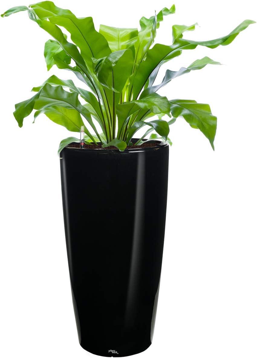 Pots de Fleurs avec syst/ème dirrigation Pflanzwerk/® /ÉCOSYST/ÈME Jardini/ère Cube 13x15x15cm Shiny Noir *Int/érieurs et ext/érieurs* *Protection UV* *Qualit/é sup/érieure de Marque*