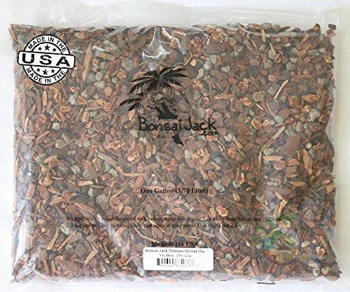 Jack Miniature (Bonsai Jack Miniature and Seedling Orchid Mix, 1 Gallon, 4 Quarts)