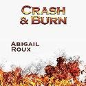 Crash & Burn   Livre audio Auteur(s) : Abigail Roux Narrateur(s) : J. F. Harding