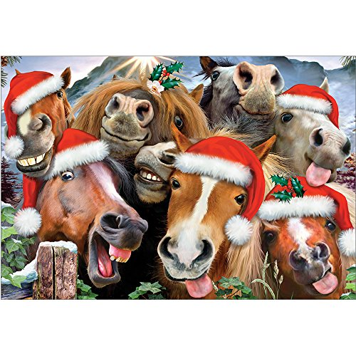Tree-Free Greetings Christmas Cards and Envelopes, Holiday Card Set, 5 x 7 Inch Blank Cards, Box Set of 10, Horsing Around Holiday, (HB93243) (Cards Horse Xmas)