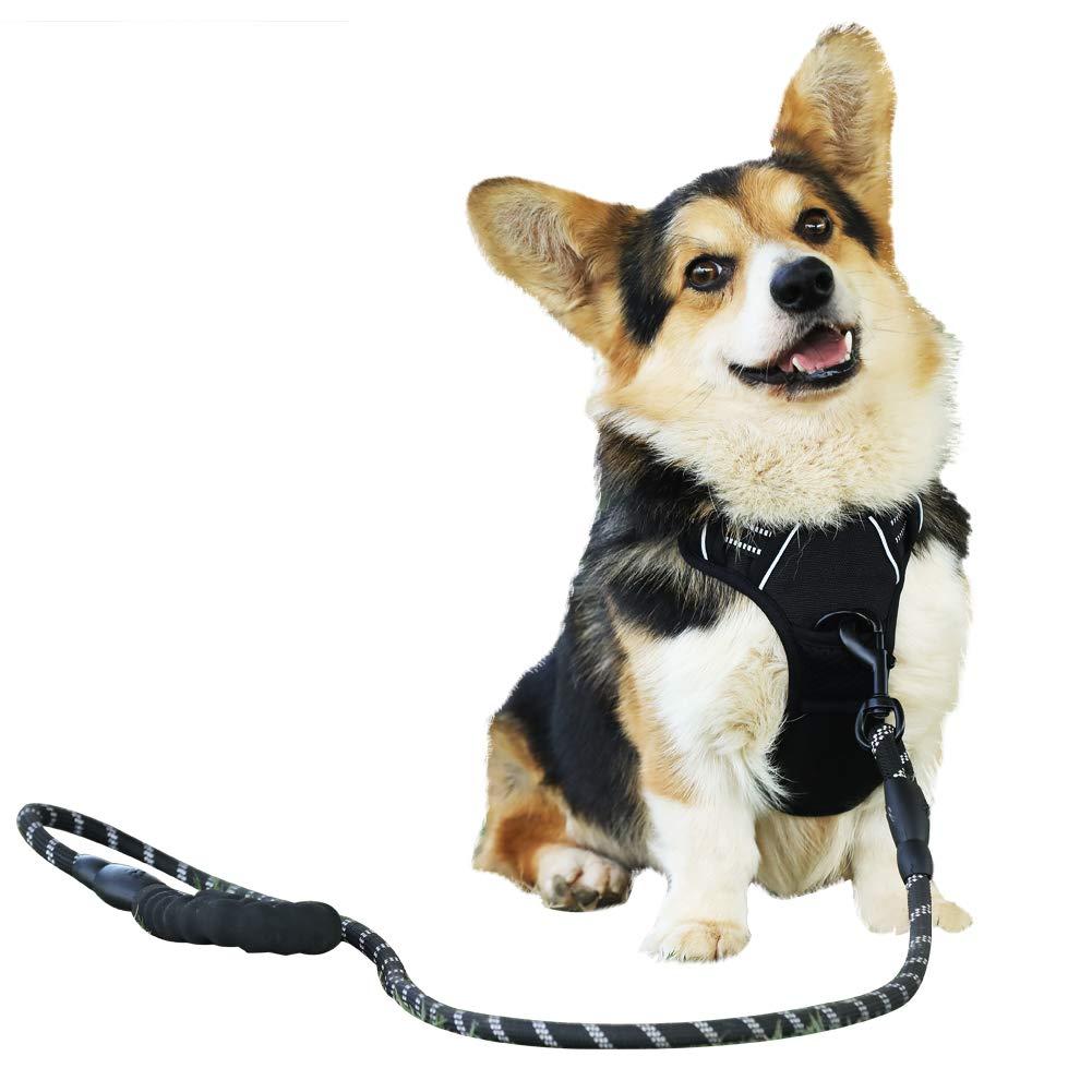 Arnés para perros Raining Pet sin tirones para mascotas, chaleco ...