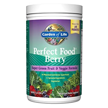 Amazon.com: Garden of Life Whole Food Fruit and Vegetable Supplement ...