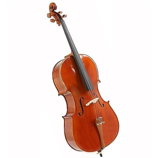 Archer 12C-500 1/2 Size Cello by Gear4music: Amazon.es ...