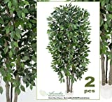 TWO 7' Extra Full Ficus Real Wood Trunks Artificial Trees Silk Plants