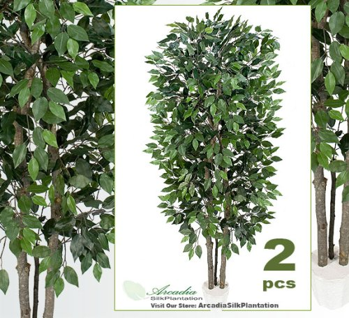 TWO 7' Extra Full Ficus Real Wood Trunks Artificial Trees Silk Plants by Arcadia Silk Plantation