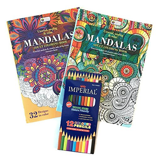 Adult Coloring Book and Colored Pencils Set- 3 Pack - Makes the Perfect Easter Gift! (Cheap Pottery Barn)