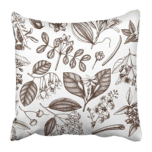 Emvency Throw Pillow Covers 16 x 16 Inches Manuka Floral Perfumery and Cosmetics Ingredients Aromatic and Medicinal Plant Aroma Pillow Case Decorative Cushion Cover Two Sides Print Pillowcase