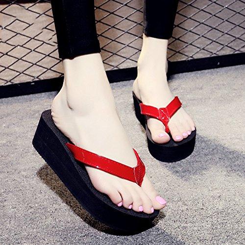 Donne Pantofole Alto Haizhen Per 1004 colore Con Tacco Dimensioni Donna 39 1004 Spiaggia Scarpe Sandali Le Da PwPdq0xrA