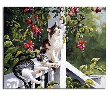 SKYTY Animales Gatos Cuadro Pintura Y Caligrafía Pintura De DIY por Números Colorear por Números Decoración para El Hogar Marco de Bricolaje 40x50cm: ...