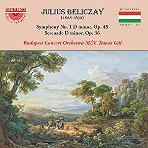 Symphony 1 in D Minor 45 / Serenade in D Minor 36