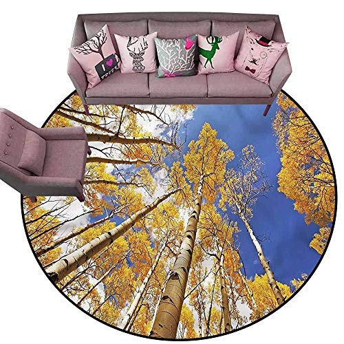 (Large Floor Mats for Living Room Forest,Tall Aspen Trees to Clouds Diameter 66