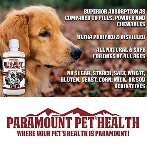 All Natural Hip Joint Supplement For Dogs Manufacturer