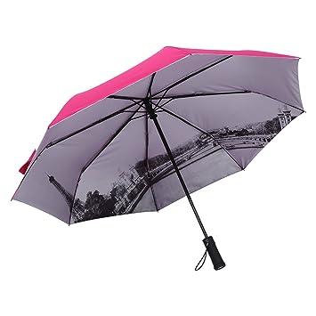 Zerodis Led paraguas Ilumine el paraguas llevado con la antorcha que dobla el paraguas automático de