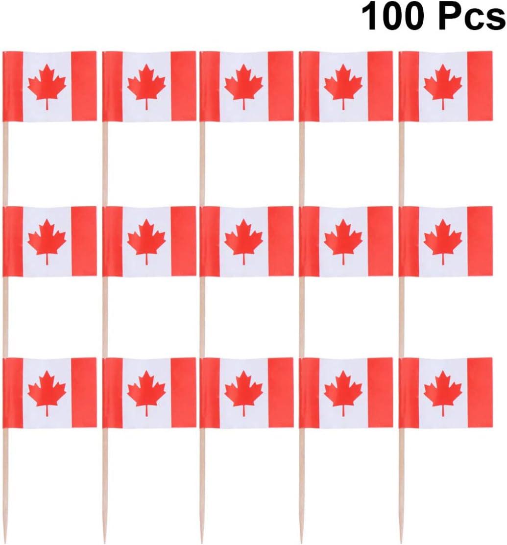 STOBOK 100 Pcs Mexique Cure-Dent Drapeau Petit Mini B/âton Drapeaux Choix D/écoration de F/ête C/él/ébration Cocktail Alimentaire Bar G/âteau Drapeaux