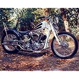 Harley Davidson Knucklehead Custom Vintage Motorcycle Bike Wall Decor Art Print Poster (16x20)