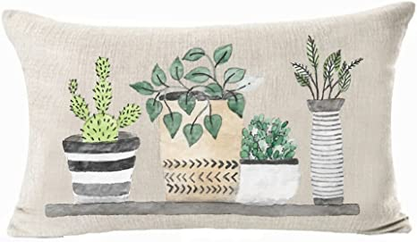 Amazon Com Astihn Cactus Succulent Plants Potted Plants Cotton Linen Throw Pillow Cover Cushion Case Home Office Decorative Rectangle 12 X 20 Inches Home Kitchen