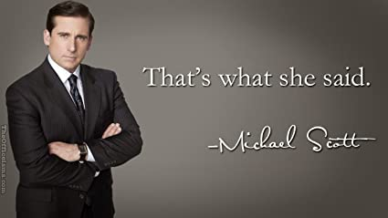 Image result for michael scott that's what she said