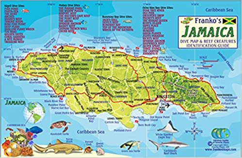 Jamaica Dive Map Coral Reef Creatures Guide Franko Maps - Amazon maps