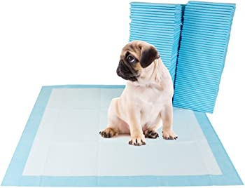 100Pk. BV Dog and Puppy Training Pads