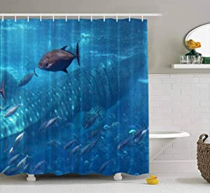 ROOLAYS Shower Curtain, Blue Ocean Underwater Creatures Fish Swimming with Whale Shark Background Concept Waterproof Shower Curtain,Summer Shower Curtains,Colorful Shower Curtain 72X78 Inch
