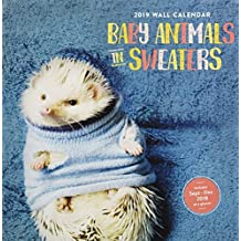 2019 Wall Calendar: Baby Animals in Sweaters