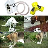 Pet Water Fountain,Hongxin Dog Pet Drinking Outdoor Trouble-Free Doggie Activated Water Fountain Hose Water Dispenser Feeders Travel Drinking Water Dispenser For Take Shower/Cooling Down Creative