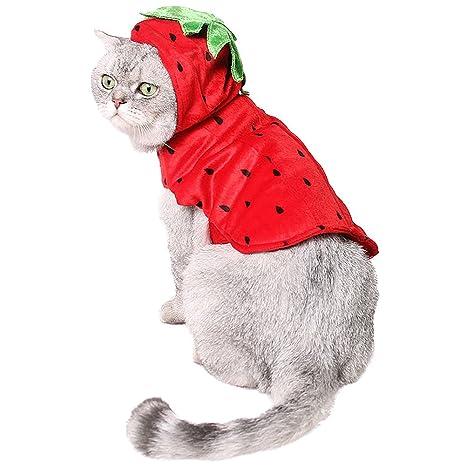 zuckerti nuevo creativo araña bufanda pañuelo para juguetes Días festivos Cosplay Performance Cumpleaños Halloween Navidad sintética