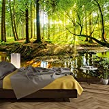 Photo Wallpaper Forest 366 x 254cm Wood Trees Sunlight wall murals included Glue