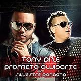 Prometo Olvidarte (Vallenato Version)