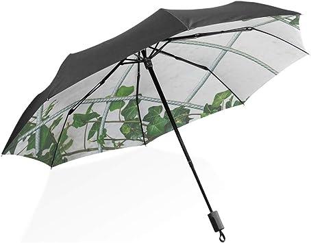 Paraguas grandes para lluvia a prueba de viento 68 pulgadas Planta trepadora Jardín Hiedra Naturaleza Planta Portátil Compacto Paraguas plegable Protección anti Uv A prueba de viento Viajes al aire li: Amazon.es: