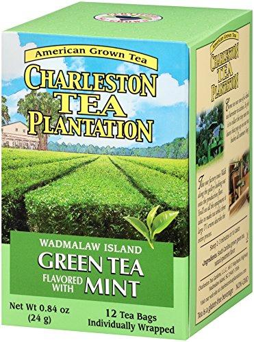 American Classic Pyramid Teabags, Island Green Mint, 12 Count, 0.84 Oz (Best American Tea Brands)