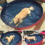 Red Pet Pool Dog Pool Swimming Pool Portable Tough and Sturdy Dia. 47.2'' (SIZE M)