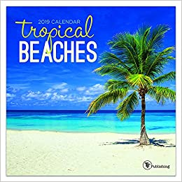 time factory tropical beaches 7 x 7 january december 2019 mini wall calendar 19 2097