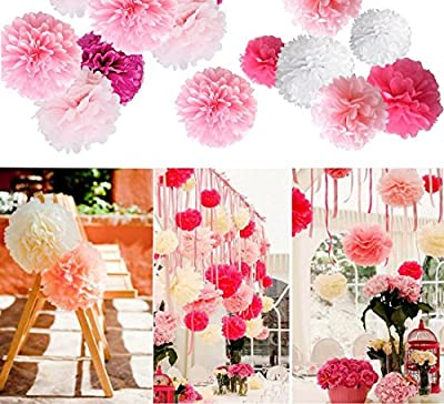Tissue Paper Flowers, G2PLAY 20 PCs Pom Poms Flower Balls Craft Pom Poms Decorating for Wedding Party Festival Outdoor Decoration ( 4 Colors)