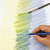 12 color SKEPY12 Sakura Color watercolor pencil (japan import)