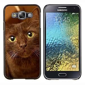EJOOY---Cubierta de la caja de protección para la piel dura ** Samsung Galaxy E5 E500 ** --La Habana Brown Ojos verdes del gato