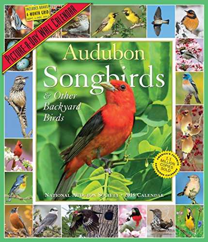 Audubon Songbirds and Other Backyard Birds Picture-A-Day Calendar 2018 cover