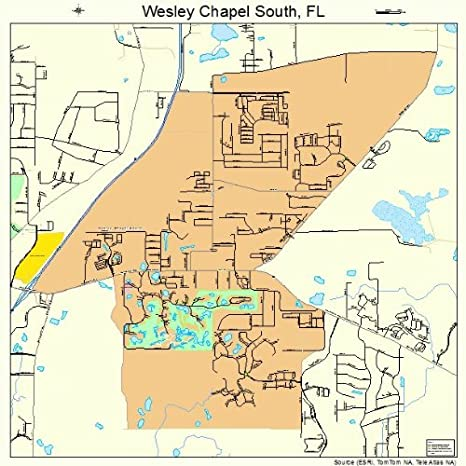 Amazon Com Large Street Road Map Of Wesley Chapel South Florida