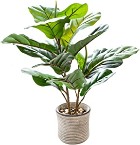 AlphaAcc 20 inch Artificial Potted Plants Indoor Office Desk Faux Fiddle Leaf Fig Plant Realistic Small Fake Farmhouse Plants for Home Kitchen Bathroom Bedroom Decor