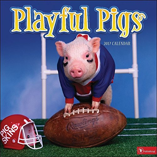 Free TF Publishing 171035 Wall Calendar 2017, Playful Pigs