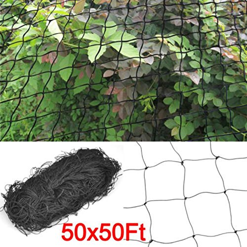Bird Netting 50' X 50' For Bird Poultry Avaiary Game Pens - Row The Online Buy