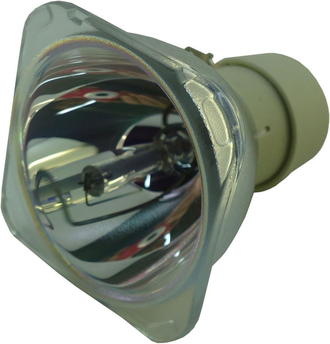 Philips UHP 260W 1.0 E20.6 Amo 9281 680 05391 Original Projector Bulb
