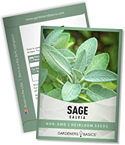 Sage Seeds for Planting Heirloom, Non-GMO Herb Variety- Great for Indoor and Outdoor Gardening by Gardeners Basics