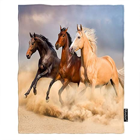 Amazon Com Moslion Horse Blankets Wild Animal Horses Run In The Wind Sand Throw Blanket 50x60 Inch Soft Flannel Plush Blanket For Couch Bed Boys Girls Home Kitchen