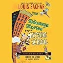 Sideways Stories from Wayside School  Audiobook by Louis Sachar Narrated by uncredited