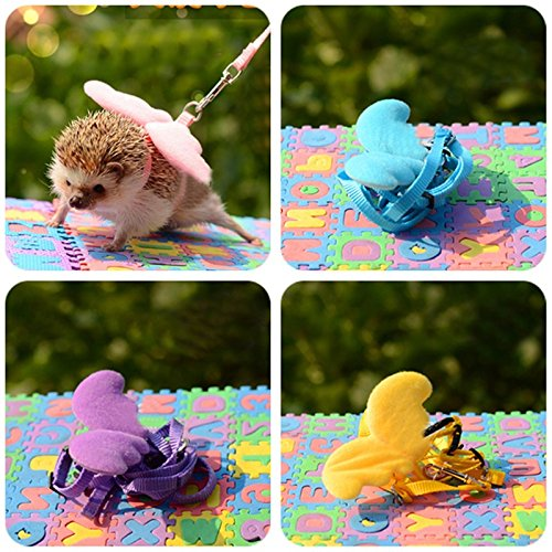 Hedgehog Harness Wing Traction Rope Nylon String Adjustable Training Playing Small Animal Outdoor Play Random (Hedgehog Supplies)